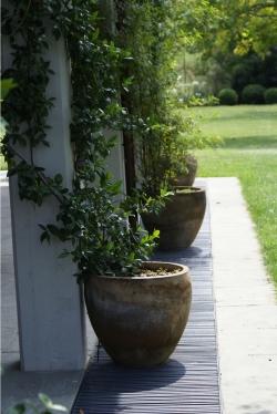 Vasi e fioriere per interno ed esterno zanetti piante - Vasi per interno ...
