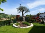 Realizzazione di giardini privati e condominiali gallery for Aiuola con olivo